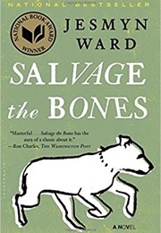 Salvage the Bones (Jesmyn Ward)