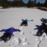 Make a Snowman, Snow Angel or Have a Snowball  Fight