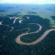 Amazon Forest and Amazon River