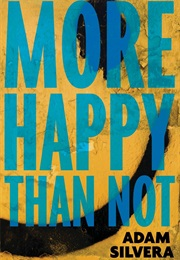 More Happy Than Not (Adam Silvera)