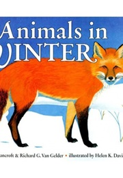 Animals in Winter (Henrietta Bancroft)
