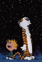 Calvin and Hobbs (Bill Waterson)