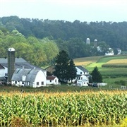 Amish Country Homestead