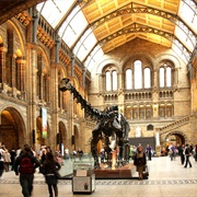 The Natural History Museum (London, UK)
