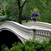 Bow Bridge (Central Park)