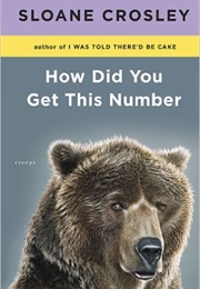 How Did You Get This Number (Sloane Crosley)