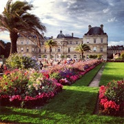 Go for a Morning Walk in Luxembourg Gardens