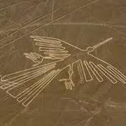 Lines and Geoglyphs of Nasca