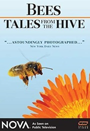 NOVA:  Bees - Tales From the Hive (2007)