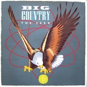 Big Country ‎– the Seer