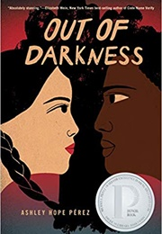 Out of Darkness (Ashley Hope Perez)