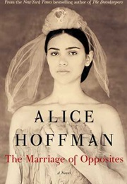 The Marriage of Opposites (Alice Hoffman)