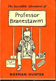 The Incredible Adventures of Professor Branestawm (Norman Hunter)