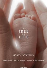 Tree of Life (2011 - Terrence Malick)