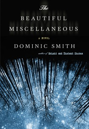 The Beautiful Miscellaneous (Dominic Smith)