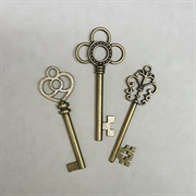 A Skeleton Key
