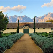 Taste Wine in the Stellenbosch, South Africa's Biggest Winemaking Region