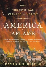 America Aflame: How the Civil War Created a Nation (David Goldfield)