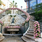Visit Grasse, France During the International Rose Festival in May