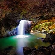 Springbrook National Park (QLD)