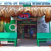 Skunk Ape Headquarters, Florida
