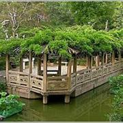 Classical Gardens of Suzhou, China