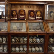 Lombrosp'S Museum of Criminal Anthropology