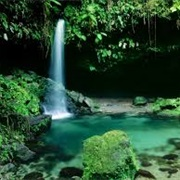 Emerald Pool, Morne Trois Pitons National Park, Dominica