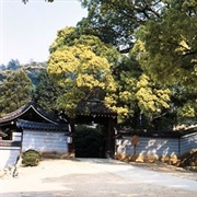 Shoren-In Temple