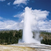 Go to Yellowstone Park
