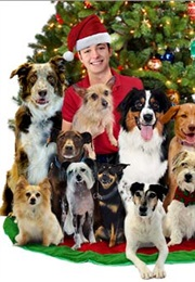 12 Dog Days Till Christmas.Every Movie And Tv Show I Ve Watched The Real List