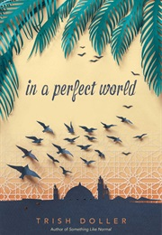 In a Perfect World (Trish Doller)