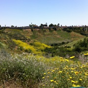 Kenneth Hahn State Recreation Area, California