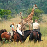 African Safari by Horseback