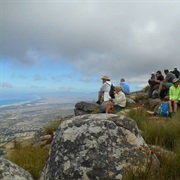 Hike Through the Helderberg Nature Reserve