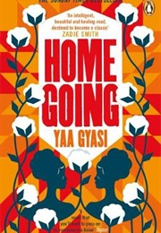 Homegoing (Yaa Gyasi)
