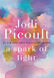 A Spark of Light (Jodi Picoult)