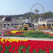 Everland, Gyeonggi-Do, South Korea
