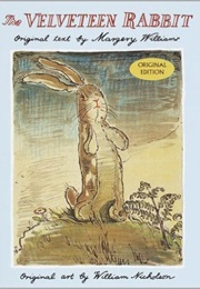 The Velveteen Rabbit (Margery Williams)