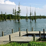 Big Lake National Wildlife Refuge