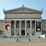Field Museum of Natural History - Chicago, IL
