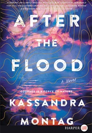 After the Flood (Kassandra Montag)