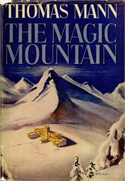 The Magic Mountain (Thomas Mann)