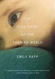 The Still Point of the Turning World (Emily Rapp)