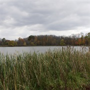Pickerington Ponds