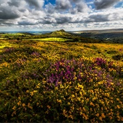 Dartmoor National Park, England