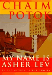 My Name Is Asher Lev (Chaim Potok)