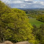 Alderley Edge and Cheshire Countryside
