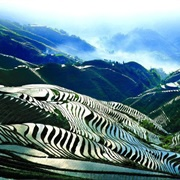 Long Ji Rice Terraces - Dragon's Backbone - China
