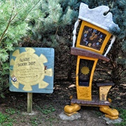 The Enchanted Forest Pine Tree Maze